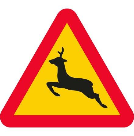 Varning för hjort EG-N (1.1.43.2)