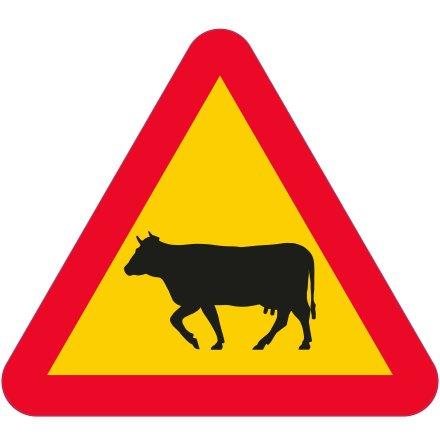 Varning för ko EG-N (1.1.43.3)